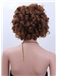 Amazing Short Curly Brown African American Lace Wigs for Women