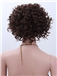 Exquisitely Michelle Bernstein Hairstyle Short Curly Full Lace 100% Human Wigs for Black Women for Black Women