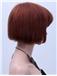 Designed Short Straight Capless Human Hair Wigs